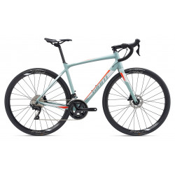 Giant CONTEND SL 1 DISC 2019 Road Bike