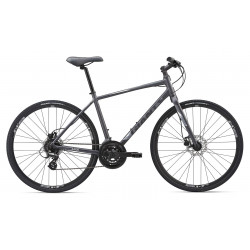 Giant ESCAPE 2 DISC 2019 Hybrid Bike