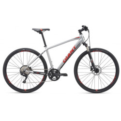Giant ROAM 1 DISC 2019 Crosstrail Bike