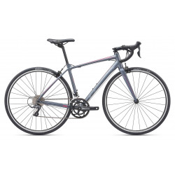 Giant Avail 2 2019 Ladies Road Bike