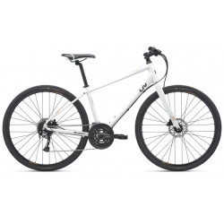 Giant Alight 1 Disc 2019 Ladies Hybrid Bike