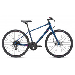 Giant Alight 2 Disc 2019 Ladies Bike