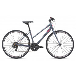 Giant Alight 3 2019 Ladies Bike
