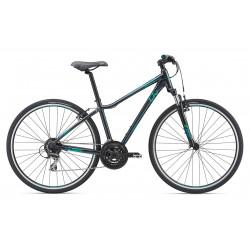 Giant Rove 3 2019 Crosstrail Bike