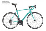 Bianchi Intenso Dama Bianca Ultegra 11sp Compact  2019 Road Bike