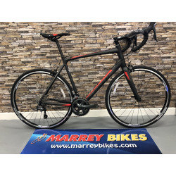 Giant CONTEND SL 2 2019 Road Bike