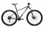 Giant TALON 29 2 MTB Bike 2020
