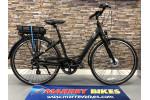 GIANT Ease-E + 2019 Hybrid Bike