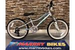 """Insync Calypso FS 20"""" Wheel Bike"""