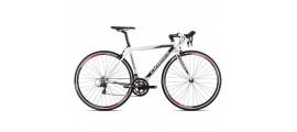 Ladies Race Bikes €500 -  €1499